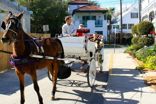 Carriage Way Bed & Breakfast: Carriage tour