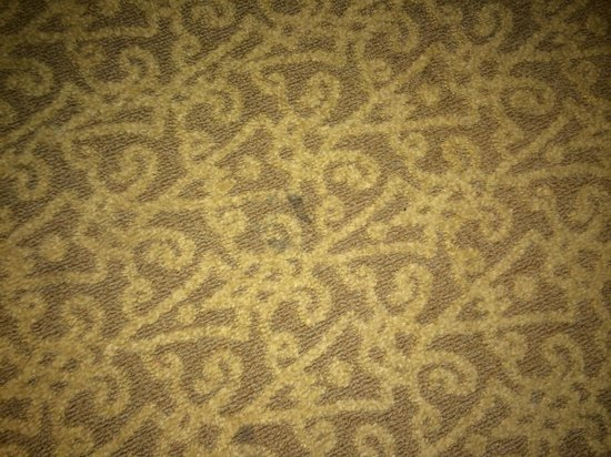 Lenox Hotel : Stained carpet Rm 801