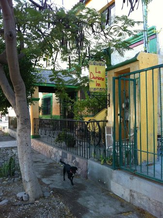 La Damiana Inn: Street entrance