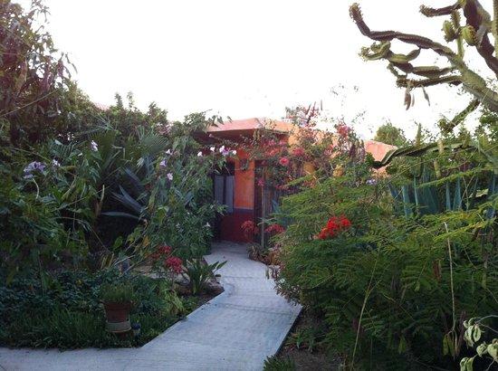 La Damiana Inn: A private casita off the patio