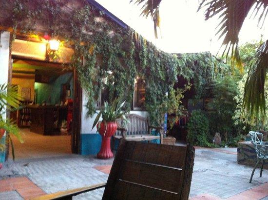 La Damiana Inn : The outdoor kitchen, covered of course