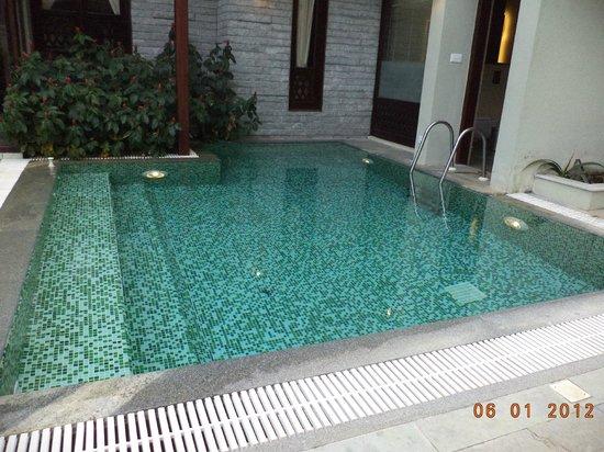 Greenwoods Resort : private pool at villa