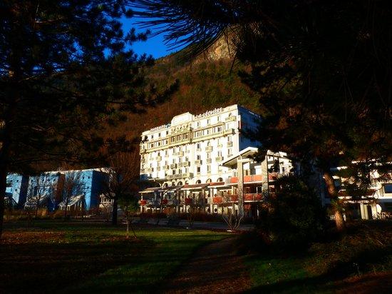 Radiana Hotel La Lechere : depuis le jardin devant