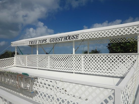 Tree Tops Guesthouse: Roof terrace