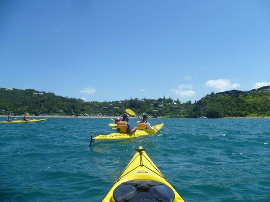 Bay of Islands Kayaking: Homeward bound back to Long Beach