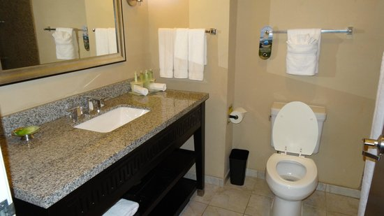 Holiday Inn Express & Suites Atlanta Airport West - Camp Creek: bathroom