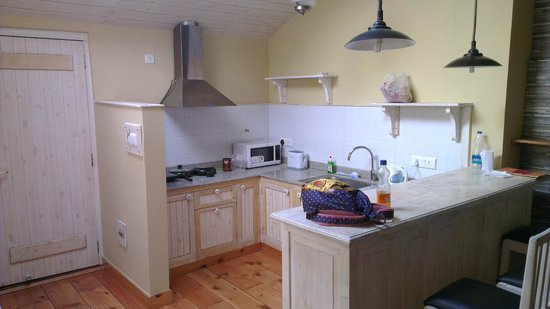 Johnson Lodge & Spa: Kitchenette in family suite
