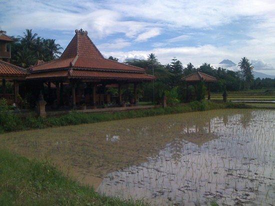 Rumah Dharma: Exterior