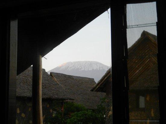 AA Lodge Amboseli : View of Kilimanjaro from window of C5