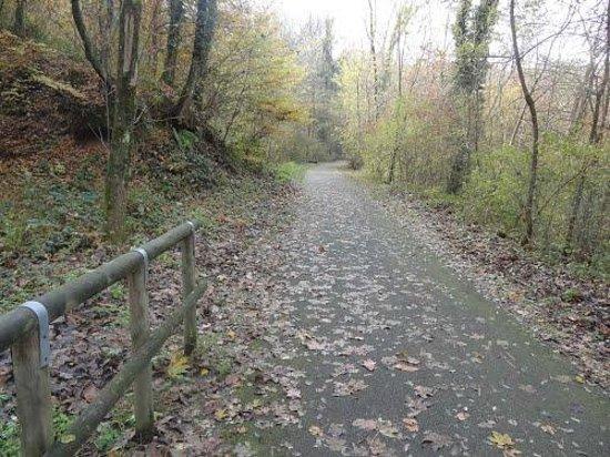 Лавена-Понте-Треза, Италия: strada ciclabile