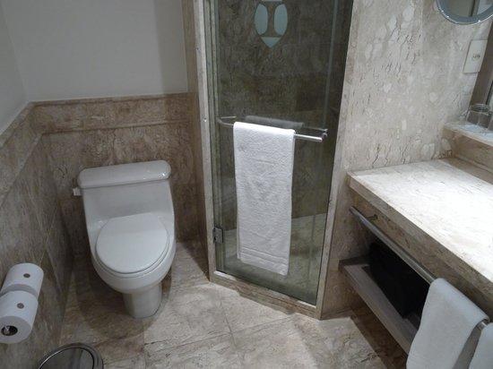 InterContinental Sao Paulo: Junior Suite - Shower