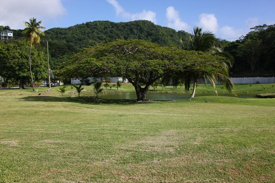 Radisson Grenada Beach Resort : The lawn area between the hotel and the street (the non-beach side)