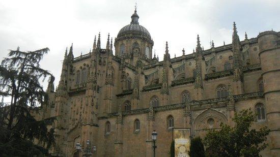 Ibis Salamanca: Кафедральный собор