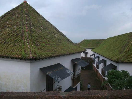 Reis Magos Fort: Moss covered Roof tops
