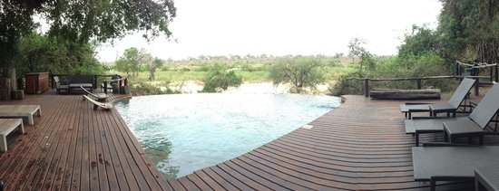 Lion Sands River Lodge : Pool