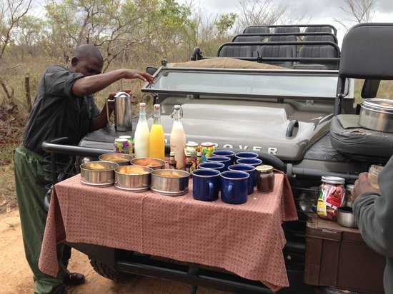 Lion Sands River Lodge: Taking a break during our Game Drive