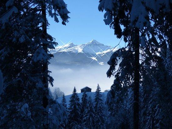 Hotel Gletschergarten: Auf dem Weg von ob. Gletscher nach Grindelwald