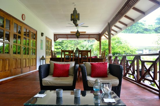 Paodise Guesthouse: terrasse