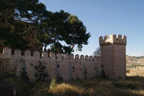 Castillo de Benisano: Castillo