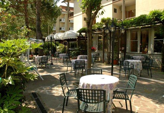 Hotel Fior di Pino: Giardino