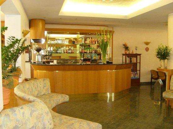 Hotel Fior di Pino : Hall