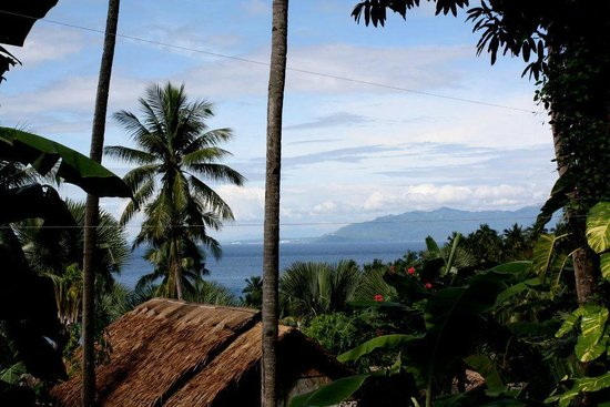 Coco Beach Island Resort: территория отеля