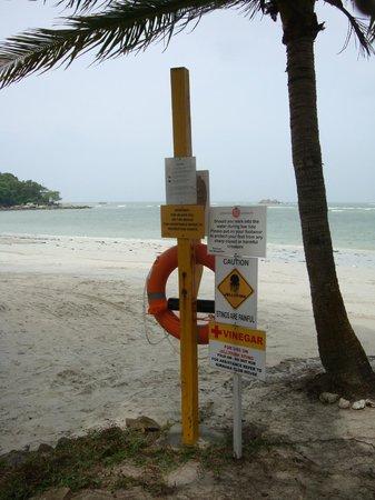 Nirwana Gardens - Nirwana Resort Hotel: Warning signposts on the beach