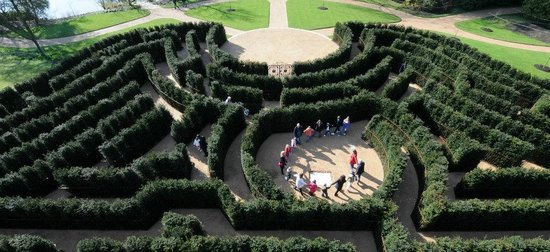Taplow, UK: Don't get lost in the giant Cliveden maze (National Trust / Clare Kendall)
