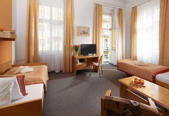 Goethe Spa & Kur Hotel: Standard double room
