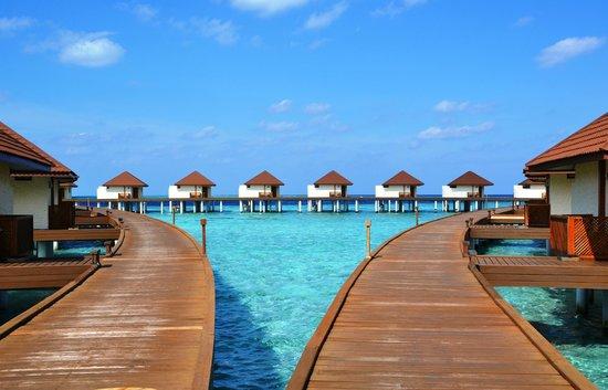 VOI Alimatha Resort: Accesso Overwater