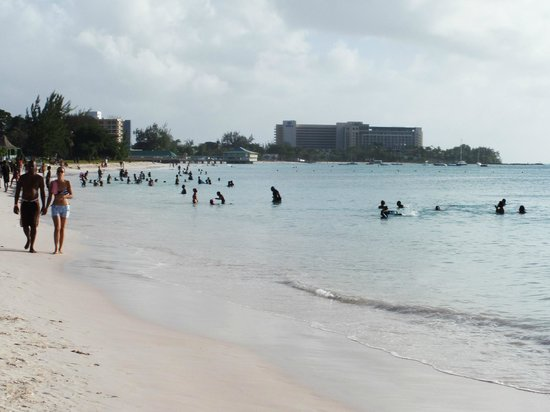 Hilton Barbados Resort: view of hotel in the distance from the beach on way from bridgetown