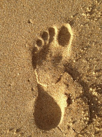 Diamond Beach Holiday Park: leaving footprints in the sand