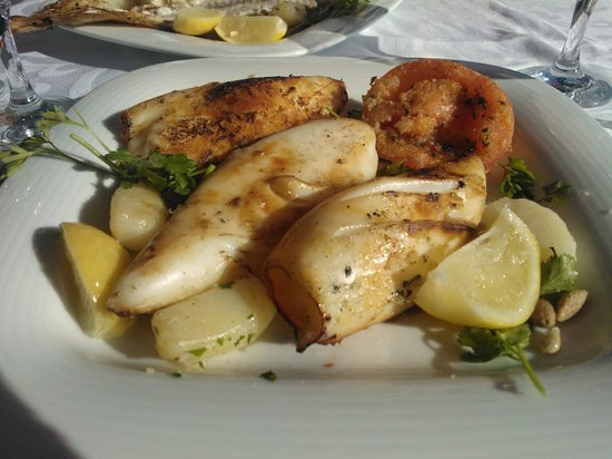 La Maison Essaouira: Calamars