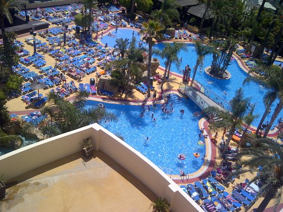 swimming pool area - Picture of Hotel Flamingo Oasis ...