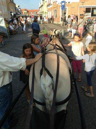 Farm Fun: Lucky in Skagen