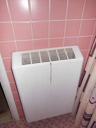 Greenup Inn: Bathroom heater