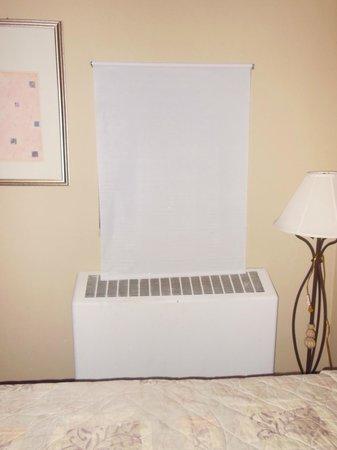 Greenup Inn: Room heater