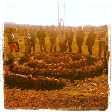 Eumelia Organic Agrotourism Farm & Guesthouse: Spiral