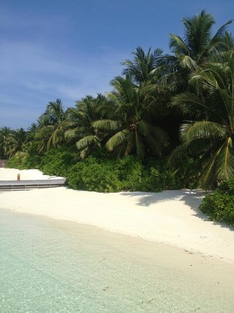 Baros Maldives : The beach