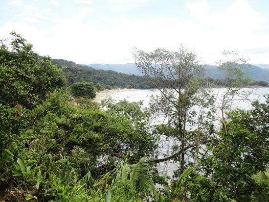 Cacandoquinha Beach: Vista da trilha que leva até a praia, na imagem aparece a praia caçandoca