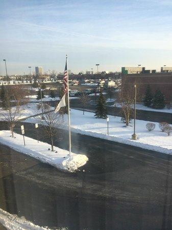 Homewood Suites Detroit Troy: Picture from room on a cold snowy day!