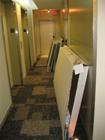 Executive Hotel Cosmopolitan: Hallway