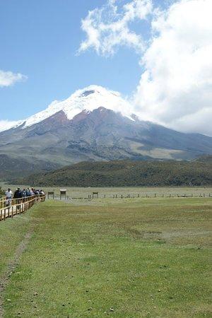 Hacienda Hato Verde: Cotopaxi Volcano