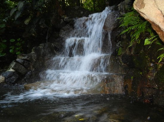 Hidden Valley Tour (Manila): Pool Waterfall