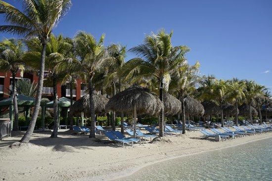 Renaissance Curacao Resort & Casino: artificial beach pool