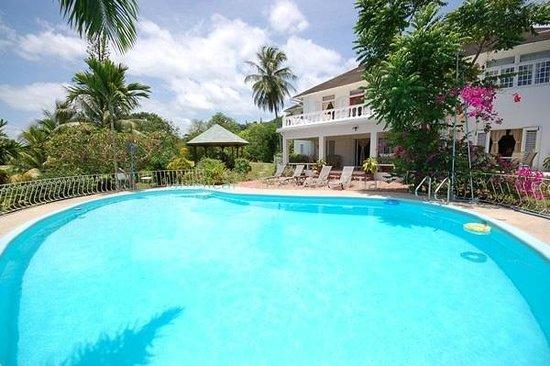 Garden House Jamaica: Pool