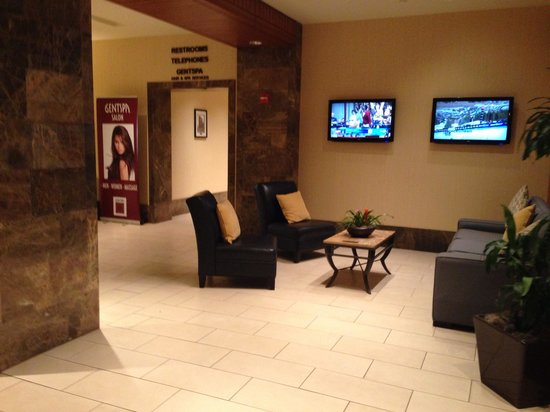 Hilton Indianapolis Hotel & Suites: Lobby