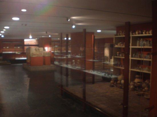 Roman-German Museum (Romisch-Germanisches Museum): interni del museo