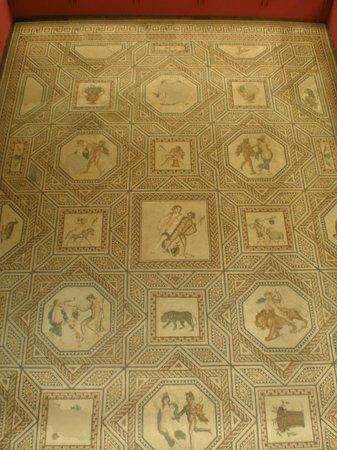 Roman-German Museum (Romisch-Germanisches Museum): pavimento da oltre un milione di pezzi