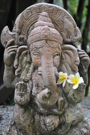 Blooming Lotus Yoga: Ganesha